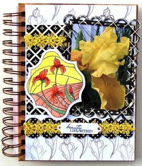 Iris Journal 1
